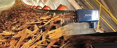 Czujnik wilgotności biomasy i innych odnawialnych źródeł energii