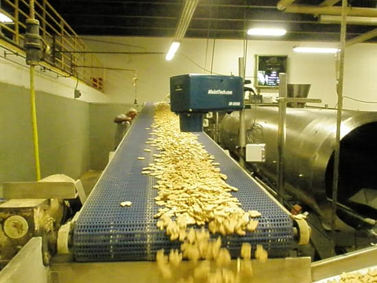 Czujniki wilgotności żywności dla szerokiej gamy produktów spożywczych